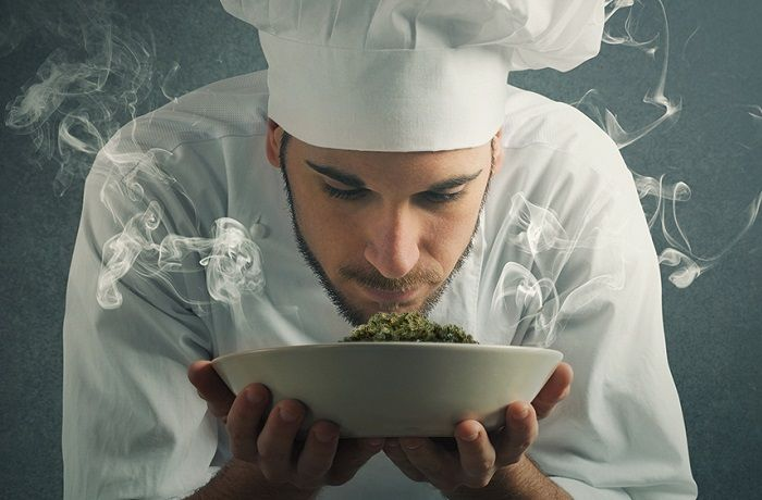 Guia-practica-para-catar-marihuana